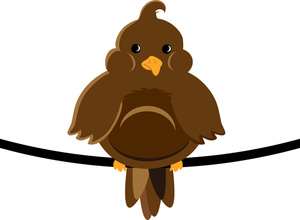 A fat brown bird on a wire.
